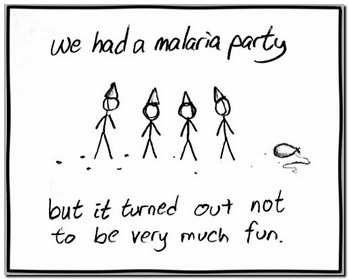 The Problem Of Malaria